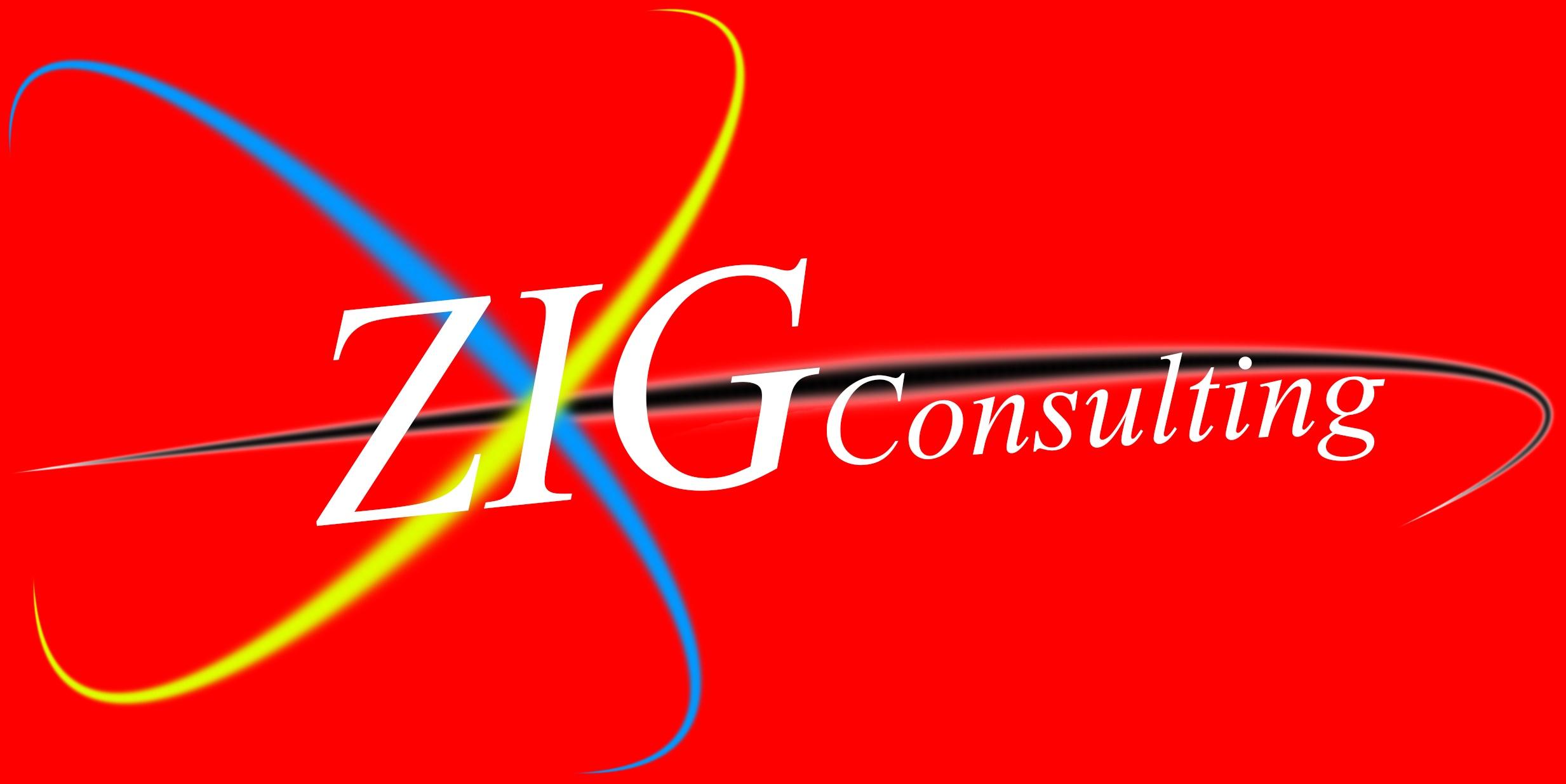 zig consulting